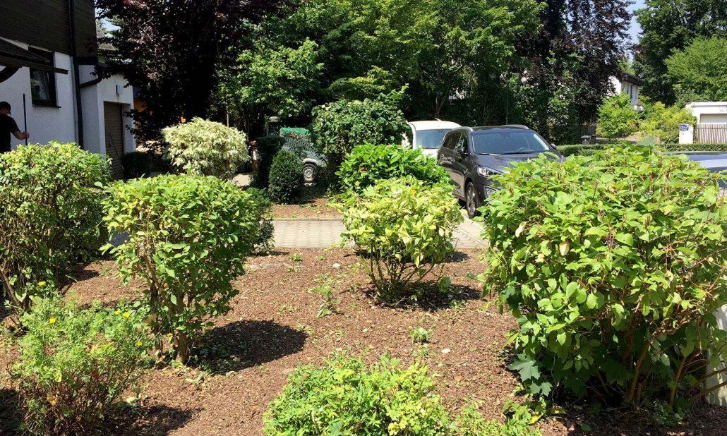 Gartenpflege München garten grünflächenpflege in münchen faire preise top